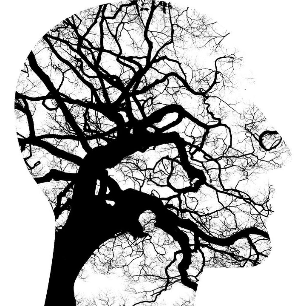 Les TCC, thérapies cognitivo comportementales